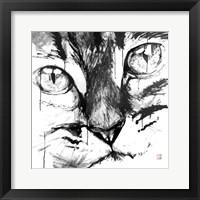 Framed Cat Face