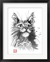 Framed Hairy Cat