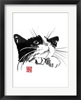 Framed Begging Cat