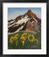Framed Mountain Flowers