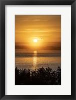 Framed Sunrise 1