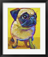 Framed Pug on Yellow