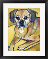 Framed Puggle on Yellow
