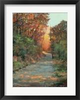 Framed Autumn Path