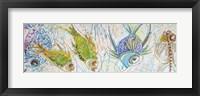 Framed Fish Five