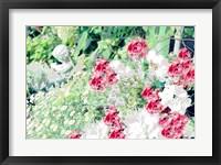 Framed Garden VI