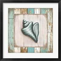 Framed Turquoise Seashell