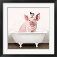 Framed Pig in Bathtub
