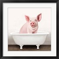 Framed Pig in Bathtub Solo