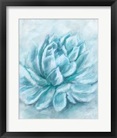 Framed Aqua Succulent III