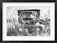 Framed Truck in Wildflower Field
