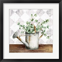 Framed Eucalyptus White Watering Can