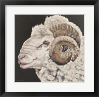 Framed Portrait of a Ram