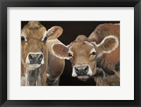 Framed Hello There Cows