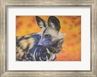 Framed African Wild Dog