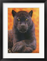 Framed Black Jaguar