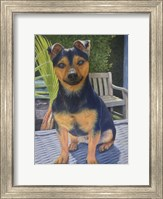 Framed Coco the Jack Russell