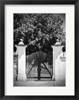 Framed Wooden Gate Black and white