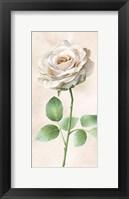 Framed Ivory Roses Panel I