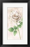 Framed Ivory Roses Panel II