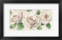 Framed Ivory Roses Landscape II