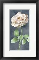 Framed Ivory Roses on Gray Panel I