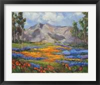 Framed Carmel Spring