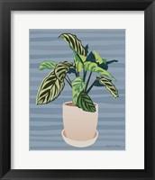 The Great Indoors III Framed Print
