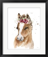 Framed Floral Pony