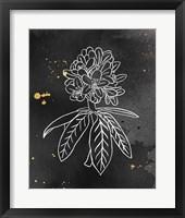 Framed Indigo Blooms II Black