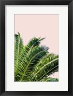 Framed Tropical Leaves On Blush I