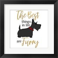 Framed Puppy Positive IV