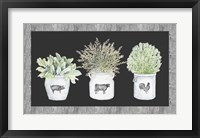 Framed Potted Farm Arrangement Trio on Chalkboard