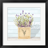 Lavender and Wood Square II Framed Print