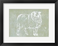 Country Sheep Framed Print