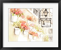 Framed Paris Flowerpots