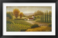 Vineyard In The Sun II Framed Print