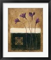 Color Field Blossom I Framed Print