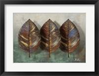Three Amigos I Framed Print