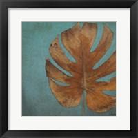 Dry Balazo in Blue I Framed Print