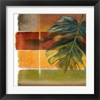 Morning Light II Framed Print