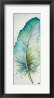 Framed Watercolor Feather IV
