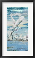 Great Blue Egret I Framed Print