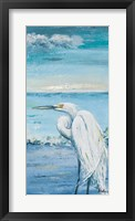 Great Blue Egret II Framed Print