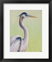 Blue Heron on Green I Framed Print