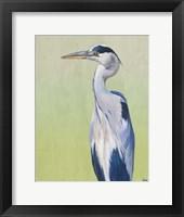 Framed Blue Heron on Green II
