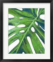 Tropical Leaf with Blue I Framed Print