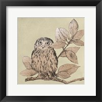 Neutral Little Owls I Framed Print