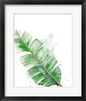 Palm Frond III Framed Print