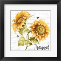 Framed Harvest Gold Sunflower Bouquet